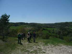 Hockley Valley 2009/05/18